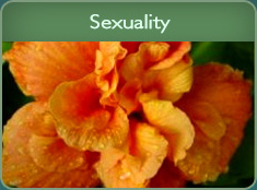 Guided Imagery Scripts on Sexuality