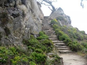 old stone pathway at point lobos, carmel, CA